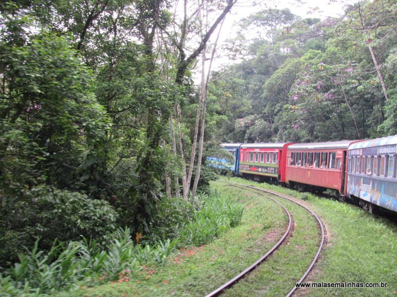 Passeio de trem Curitiba – Morretes