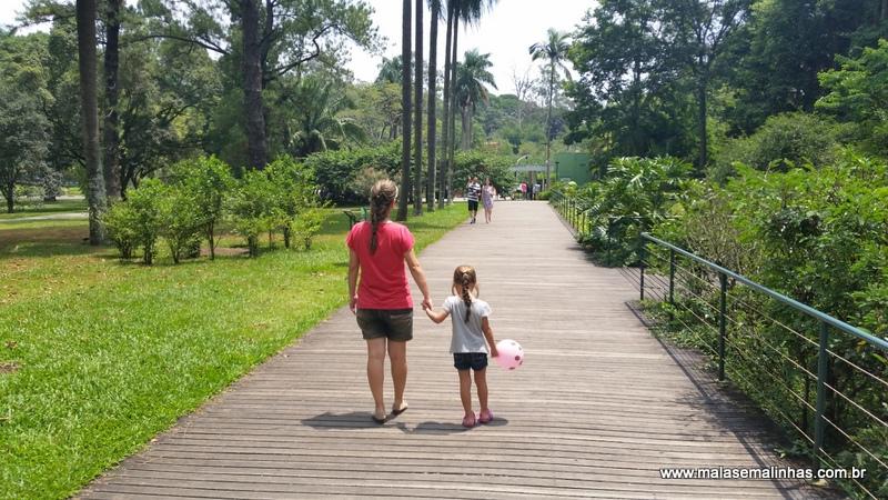 jardim botânico são paulo paisagem