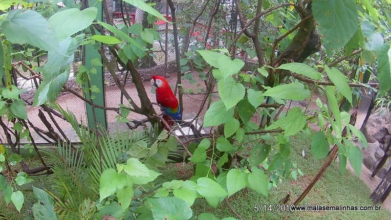 Zoo Pomerode (124)