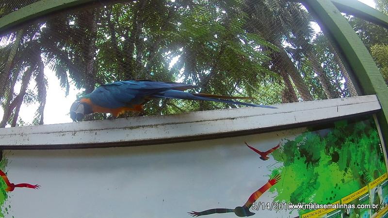 Zoo Pomerode (127)