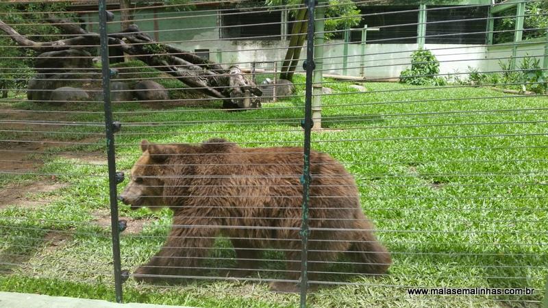 Zoo Pomerode (78)