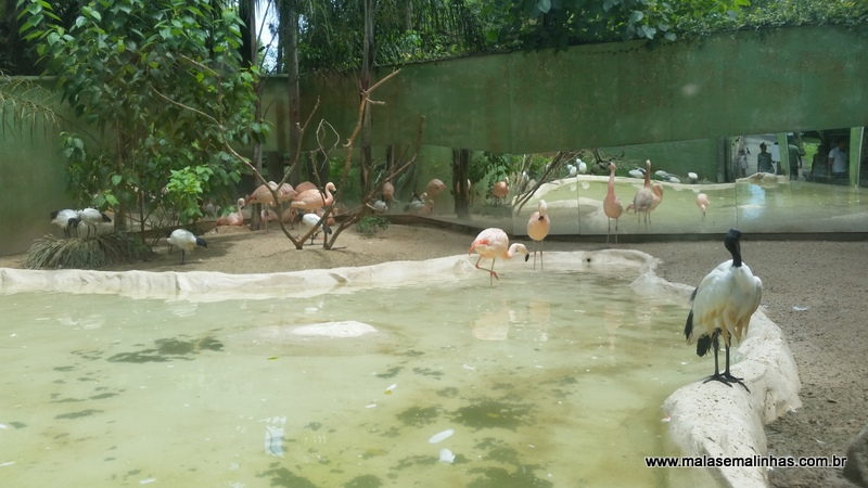 Zoo Pomerode (90)