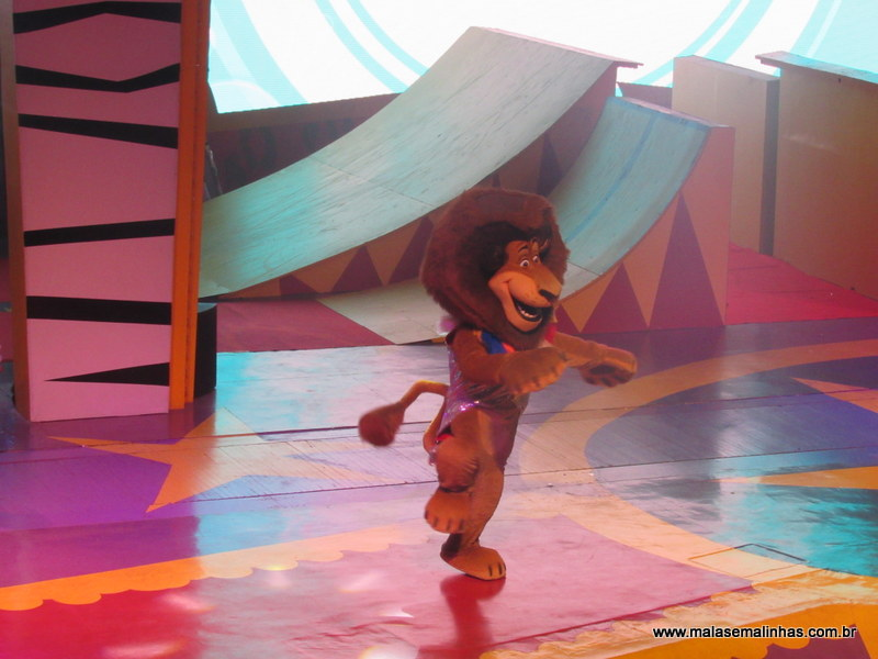 Beto Carrero World Shows (14)