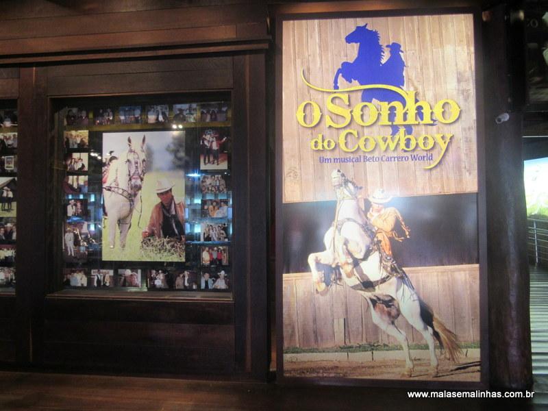 Beto Carrero World Shows (18)