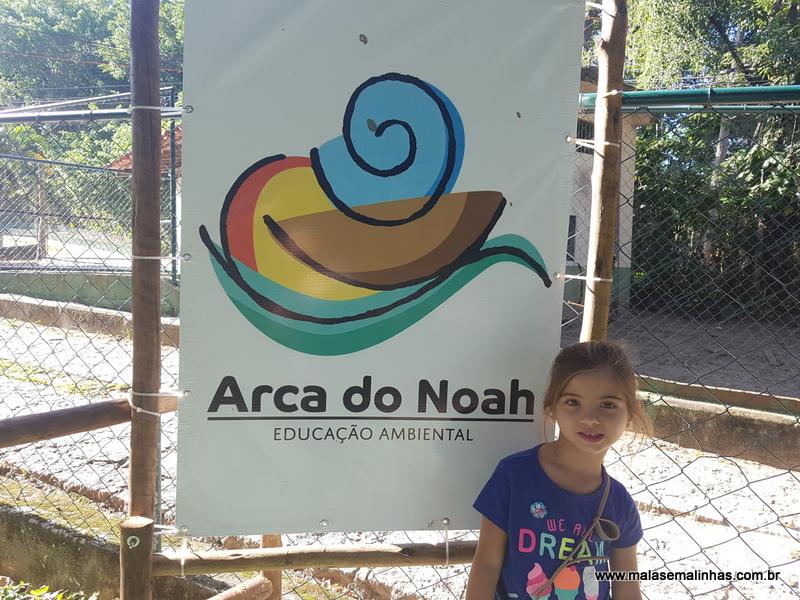 Arca do Noah (7)