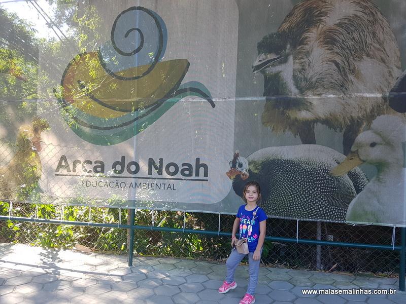 Arca do Noah (74)