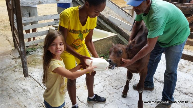 Fazenda Gamela Eco Resort (15)