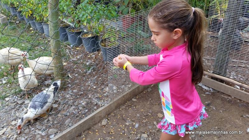 Fazenda Gamela Eco Resort (27)