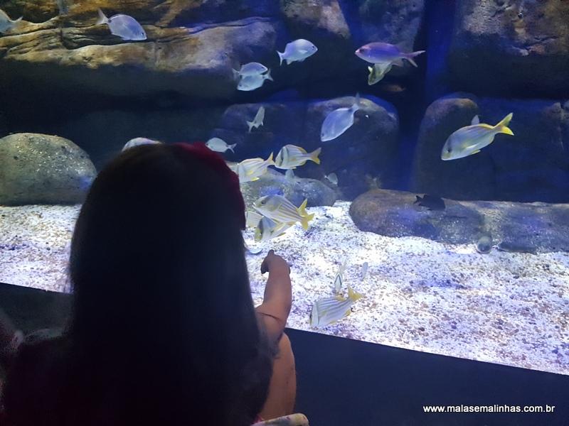 Beatriz e Lucas encantados com os peixes